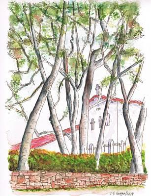 San Carlos Painting - White Birch Trees In San Luis Obispo Mission, San Luis Obispo, California by Carlos G Groppa
