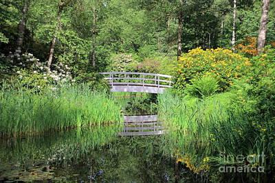 Tree Photograph - White Bridge Over A Pond by Amanda Mohler