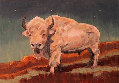 White Buffalo Nocturne Art Print