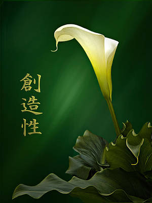 White Calla Lily Art Print by Judy  Johnson