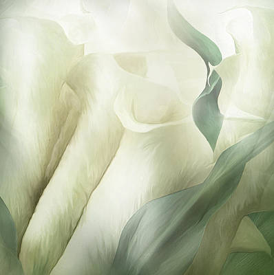 Mixed Media - White Calla Moods by Carol Cavalaris