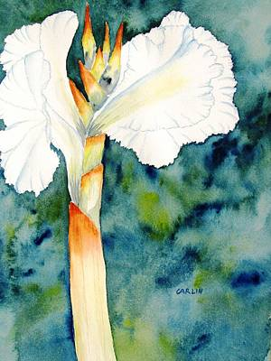 Painting - White Canna Flower by Carlin Blahnik CarlinArtWatercolor