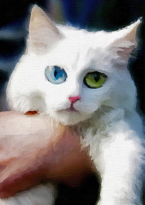 Watercolor Pet Portraits Photograph - White Cat On Hands by Aleksandr Volkov