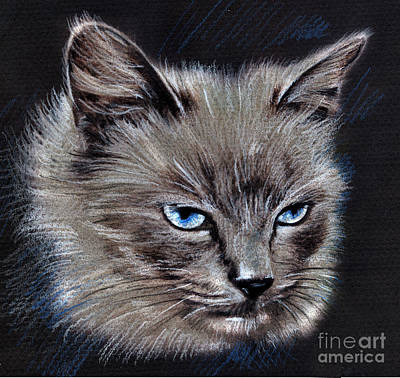 White Cat Portrait Art Print