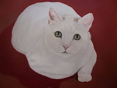 House Pet Painting - White Cat by Zina Stromberg