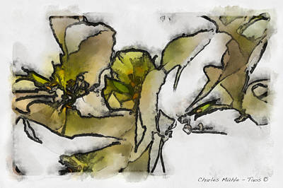 Digital Art - White by Charles Muhle