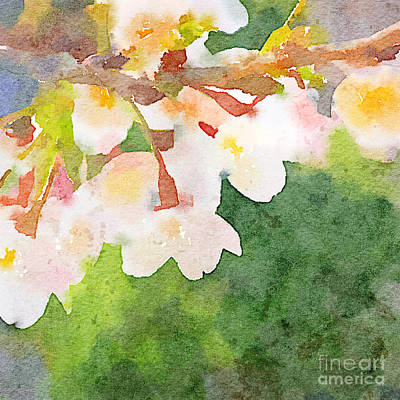Painting - White Cherry Blossoms Digital Watercolor Painting 2 by Beverly Claire Kaiya