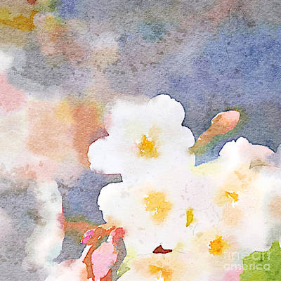 Painting - White Cherry Blossoms Digital Watercolor Painting 3 by Beverly Claire Kaiya