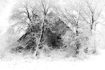 Christmas Blocks Photograph - White Christmas 1 by Julie Hamilton