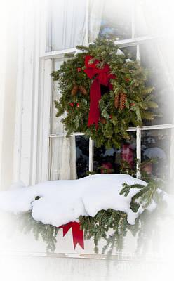 Photograph - White Christmas by Gina Savage