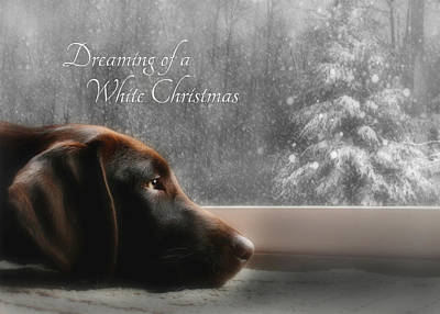 Labrador Photograph - White Christmas by Lori Deiter