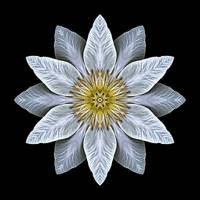 Photograph - White Clematis Flower Mandala by David J Bookbinder