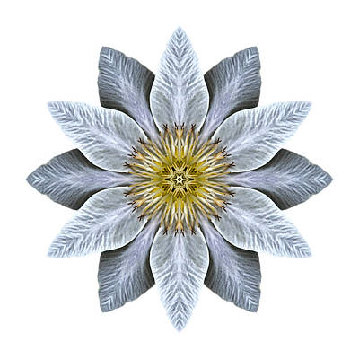 Photograph - White Clematis I Flower Mandala White by David J Bookbinder