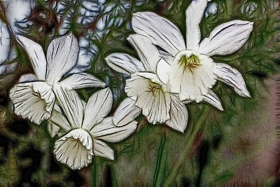 Art Print featuring the digital art White Daffodil Flowers by Photographic Art by Russel Ray Photos