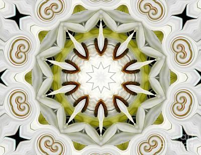 White Daisies Kaleidoscope Art Print by Rose Santuci-Sofranko