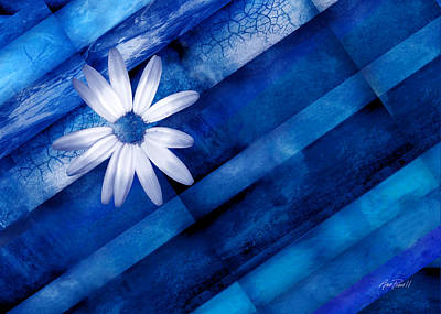 Digital Art - White Daisy On Blue Two by Ann Powell