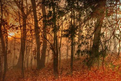 White Dawn Stillness Original