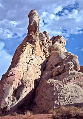 Valley Of Fire Photograph - White Dome Rock Nevada by Liz Leyden