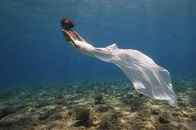 Diver Photograph - White Dress by Assaf Gavra