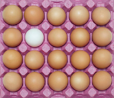 White Egg With Large Group Of Brown Art Print by Ozgur Donmaz