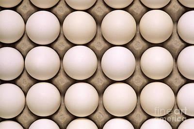 Photograph - White Eggs In Carton by Jim Corwin