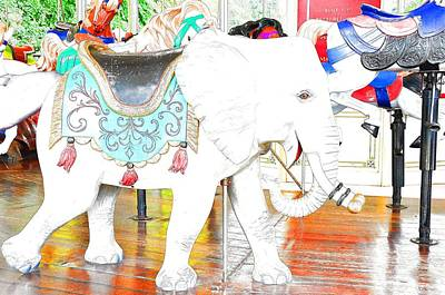Photograph - White Elephant by Jan Amiss Photography