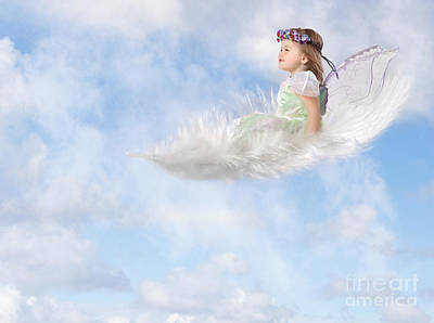 Photograph - White Feather Dream by Cindy Singleton