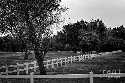 Recently Sold - Frank J Casella Royalty-Free and Rights-Managed Images - White Fence on the Wooded Green by Frank J Casella