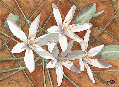Painting - White Flowers by Ken Powers
