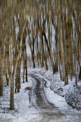 Snowy Roads Photograph - White Forest by Kathy Jennings