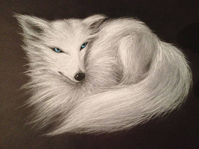 Art Print featuring the drawing White Fox by Patricia Lintner