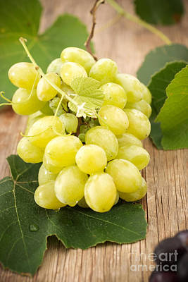 Yellow Grapes Photograph - White Grape by Viktor Pravdica