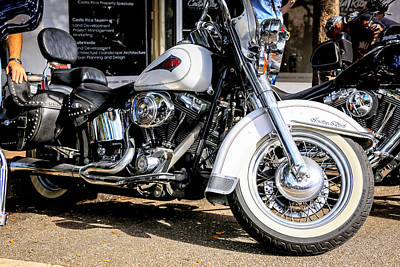 Owls - White Harley by Chris Smith