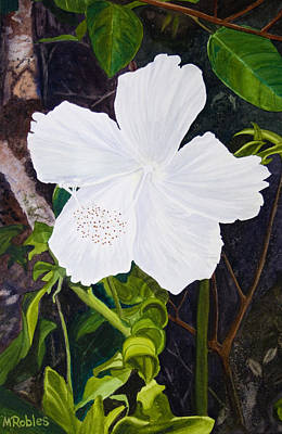White Hibiscus Art Print by Mike Robles