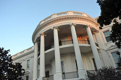 Photograph - White House Mornings by Jarrett Hendrix