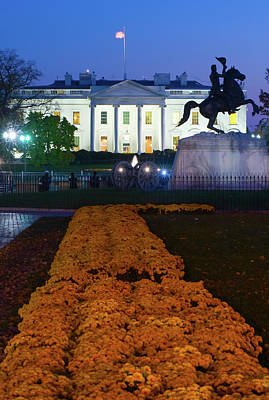 White House With Flowers At Dusk Art Print