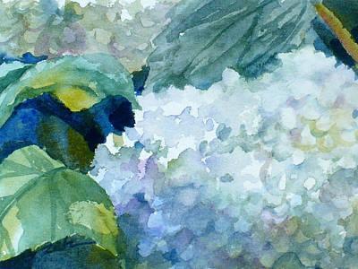Painting - White Hydrangeas by Janet Zeh