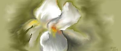 Digital Art - White Iris by Jessica Wright