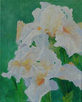 Painting - White Irises Original Oil Painting Iris Cluster Beautiful Floral Art by Elizabeth Sawyer