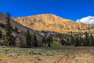 White Knob Mountain Peak Art Print by Robert Bales