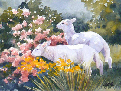 Painting - White Lambs In Scotland by Janet Zeh