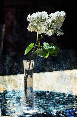 White Lilacs Print by Randi Grace Nilsberg