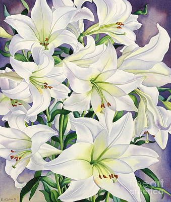 Flower Wall Art - Painting - White Lilies by Christopher Ryland