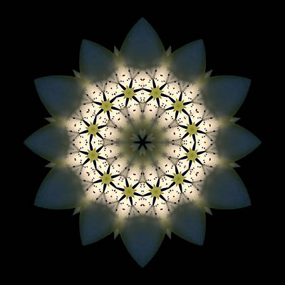 Photograph - White Lily IIi Flower Mandala by David J Bookbinder