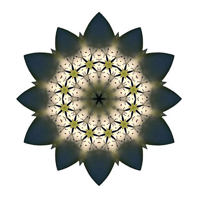 Photograph - White Lily IIi Flower Mandala White by David J Bookbinder