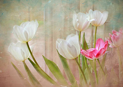 White Lily Show Art Print by Bonnie Willis