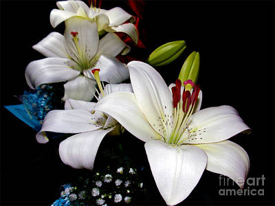Art Print featuring the photograph White Lilys by Elvira Ladocki
