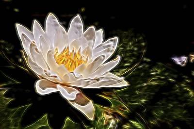 Andrea King Digital Art - White Lotus Flower by Andrea King