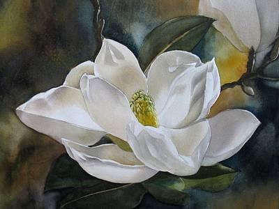 White Magnolia Art Print by Alfred Ng