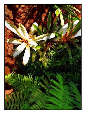 Digital Art - White Maui Flowers by Joan  Minchak